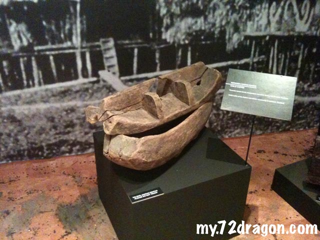 Coffin Exhibition12