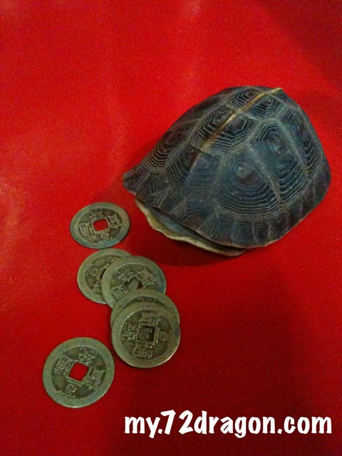 Turtle Shell and Coins Oracle