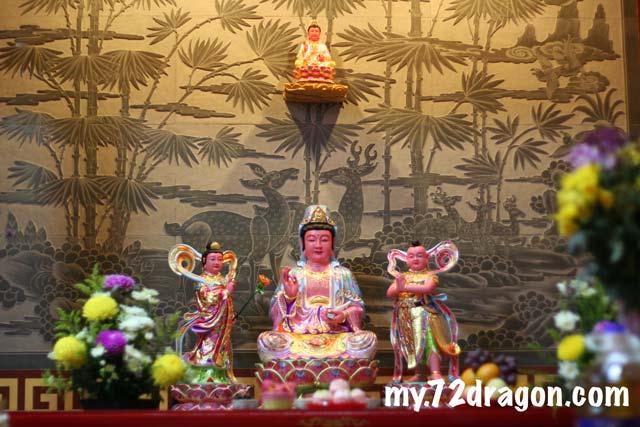 Choo Sing Tong-Kuala Lumpur / 聚星堂-吉隆坡 5