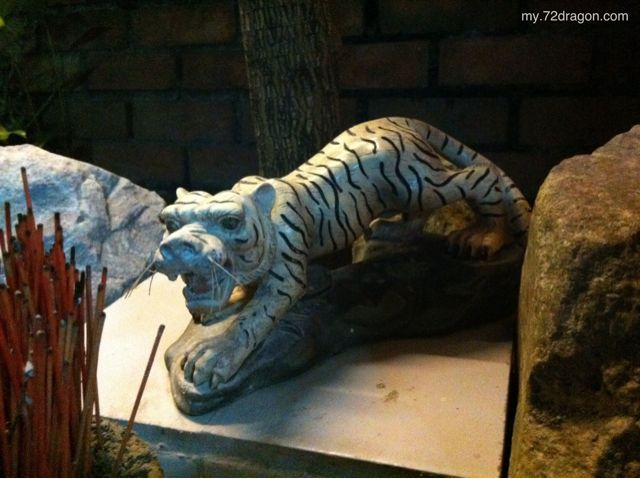Offering to White Tiger / 拜白虎